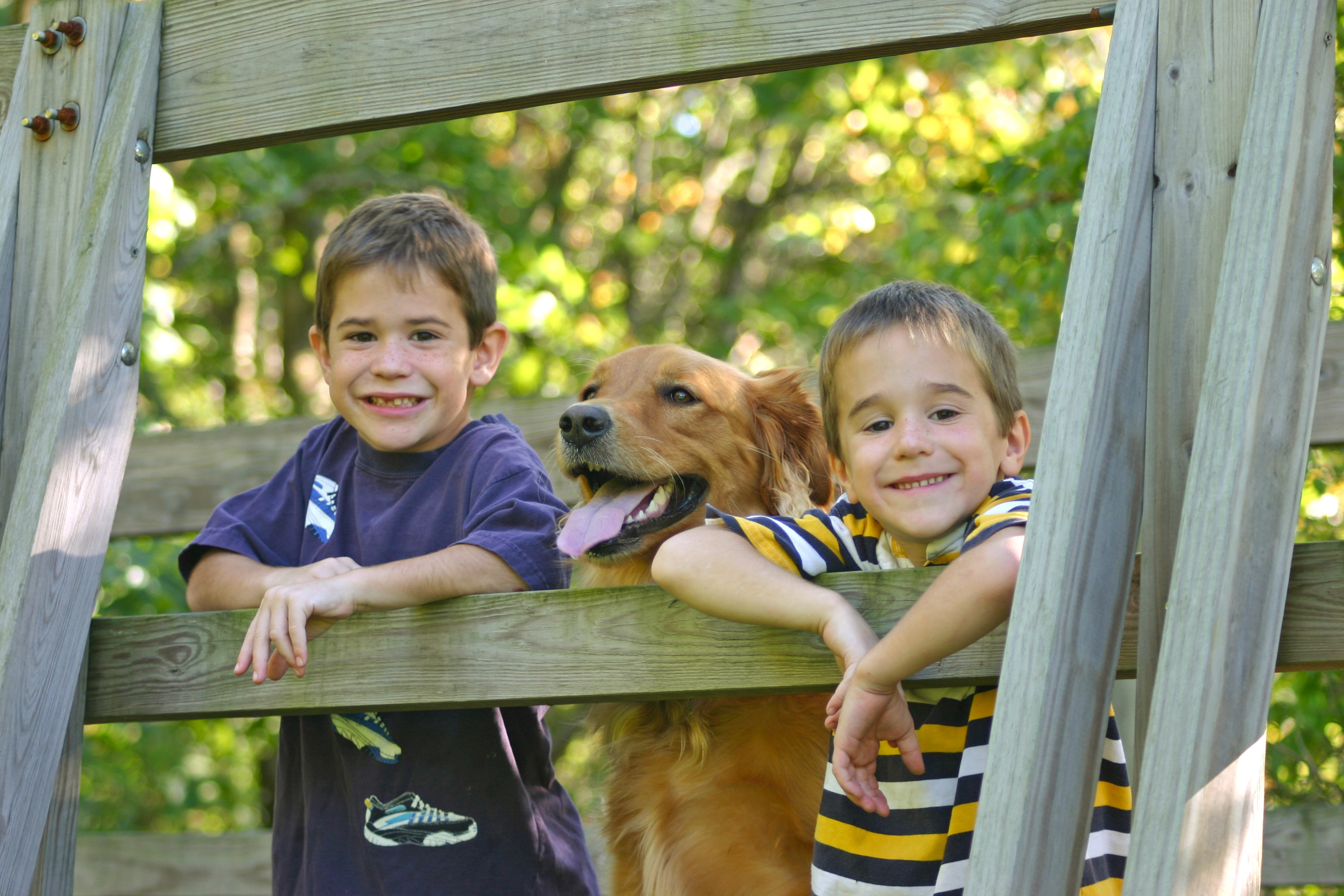 Litte Boys with Dog